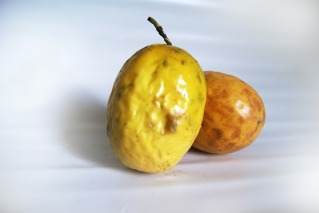 passion-fruit-646854_1920