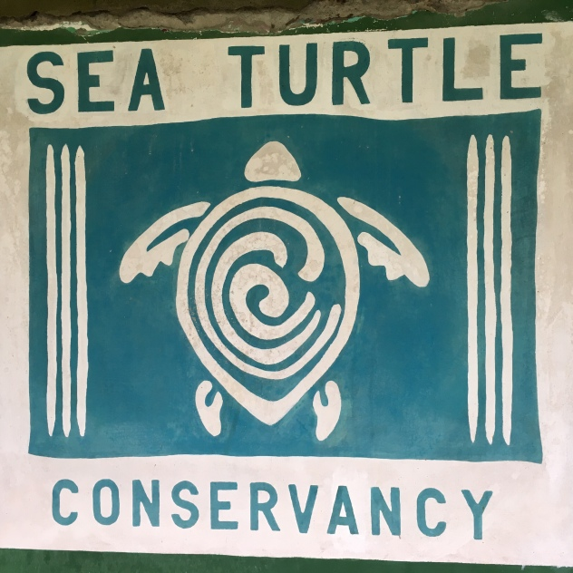 photo of logo for the Sea Turtle Conservancy